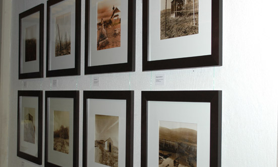 2009-10-29 Galerie Rathaus: Weingärten  09sodomka_DSC_0012.jpg